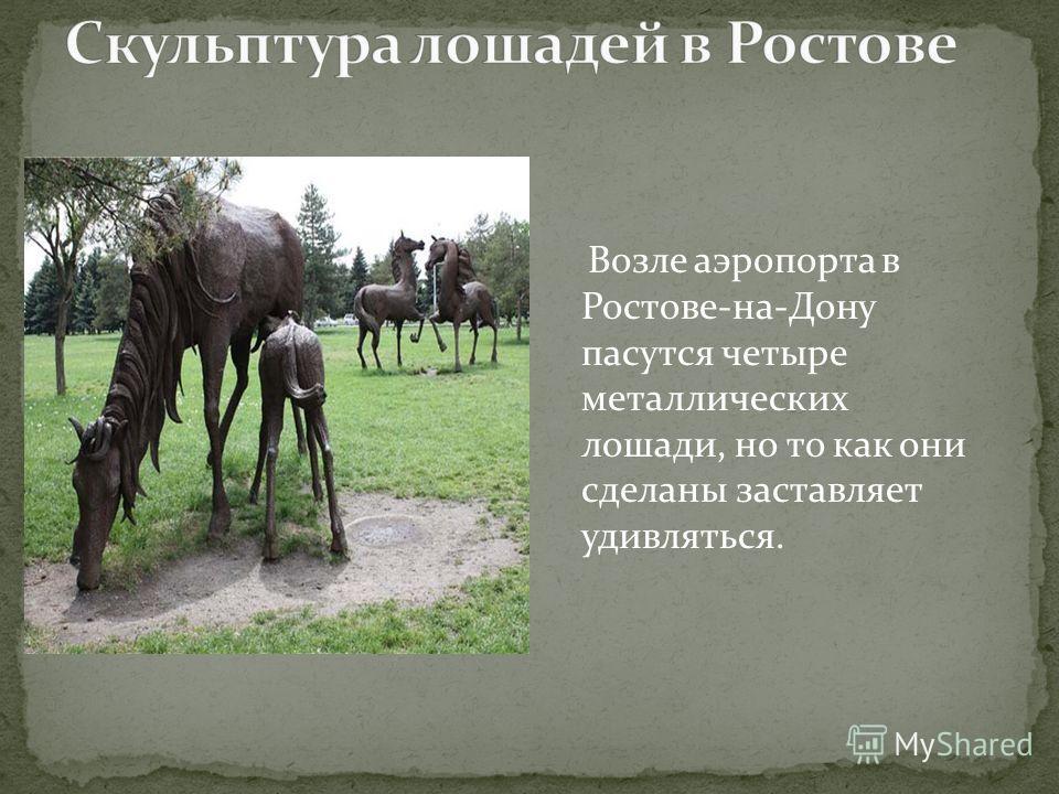 Возле аэропорта в Ростове-на-Дону пасутся четыре металлических лошади, но то как они сделаны заставляет удивляться.