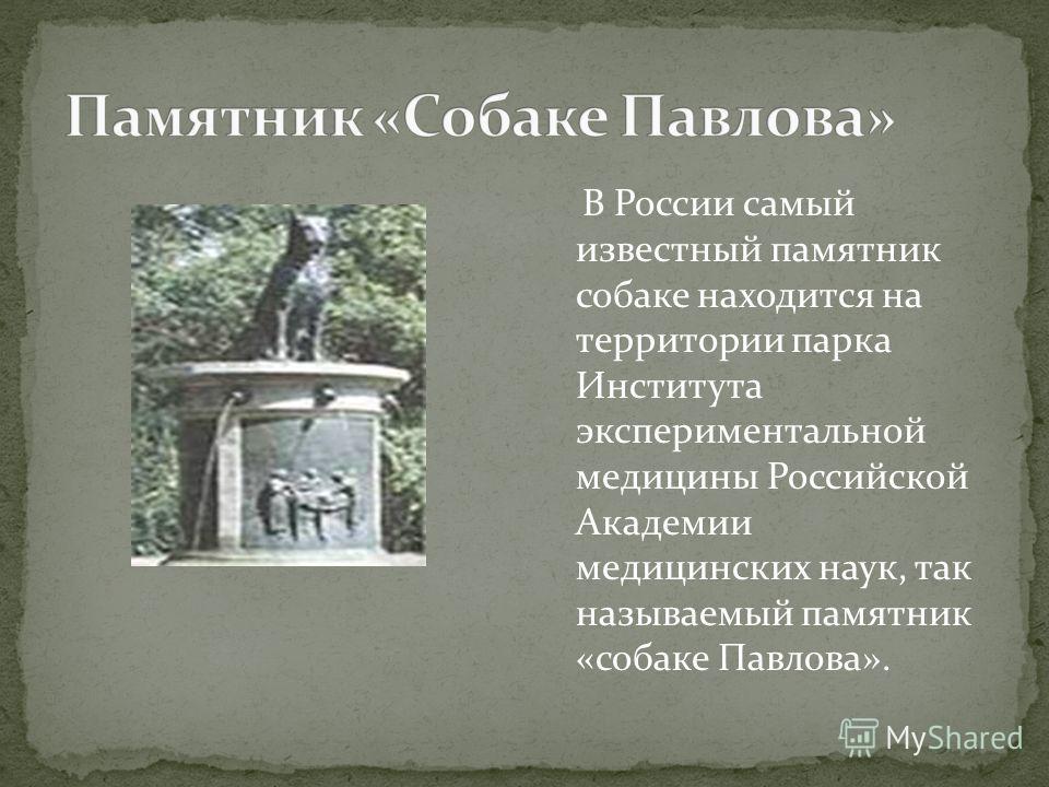 В России самый известный памятник собаке находится на территории парка Института экспериментальной медицины Российской Академии медицинских наук, так называемый памятник «собаке Павлова».