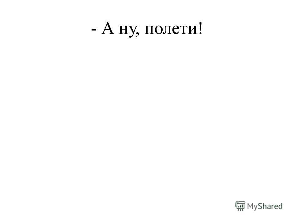 - А ну, полети!