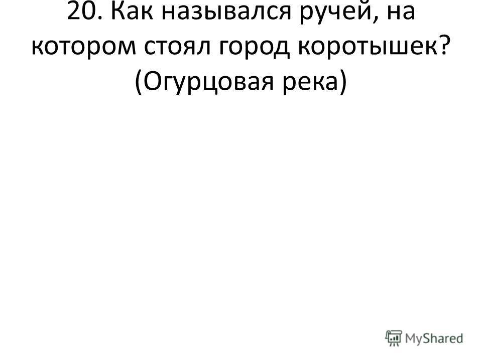 20. Как назывался ручей, на котором стоял город коротышек? (Огурцовая река)