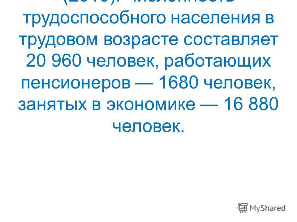 Общая численность населения Лысковского района 40 399 человек (2010). Численность трудоспособного населения в трудовом возрасте составляет 20 960 человек, работающих пенсионеров 1680 человек, занятых в экономике 16 880 человек.