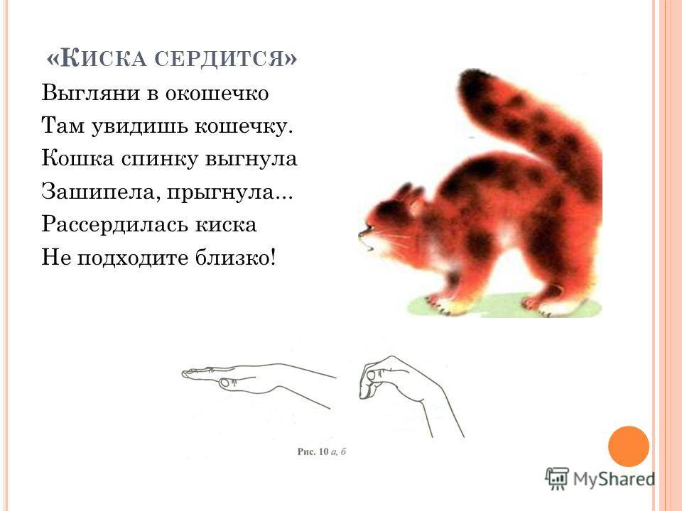 «К ИСКА СЕРДИТСЯ » Выгляни в окошечко Там увидишь кошечку. Кошка спинку выгнула Зашипела, прыгнула... Рассердилась киска Не подходите близко!