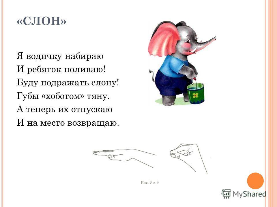 «СЛОН» Я водичку набираю И ребяток поливаю! Буду подражать слону! Губы «хоботом» тяну. А теперь их отпускаю И на место возвращаю.