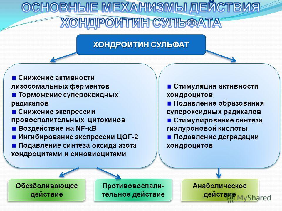 ХОНДРОИТИН СУЛЬФАТ Снижение активности лизосомальных ферментов Торможение супероксидных радикалов Снижение экспрессии провоспалительных цитокинов Воздействие на NF- В Ингибирование экспрессии ЦОГ-2 Подавление синтеза оксида азота хондроцитами и синов
