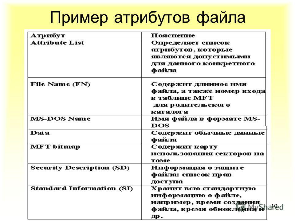 10 Пример атрибутов файла