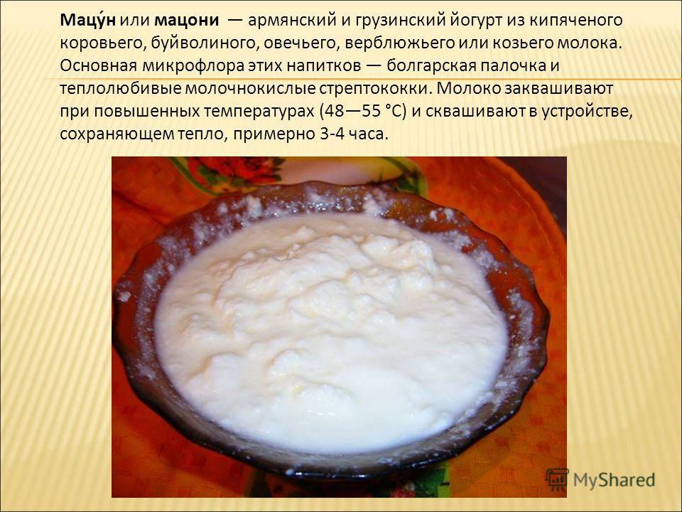 Мацу́н или мацони армянский и грузинский йогурт из кипяченого коровьего, буйволиного, овечьего, верблюжьего или козьего молока. Основная микрофлора этих напитков болгарская палочка и теплолюбивые молочнокислые стрептококки. Молоко заквашивают при пов