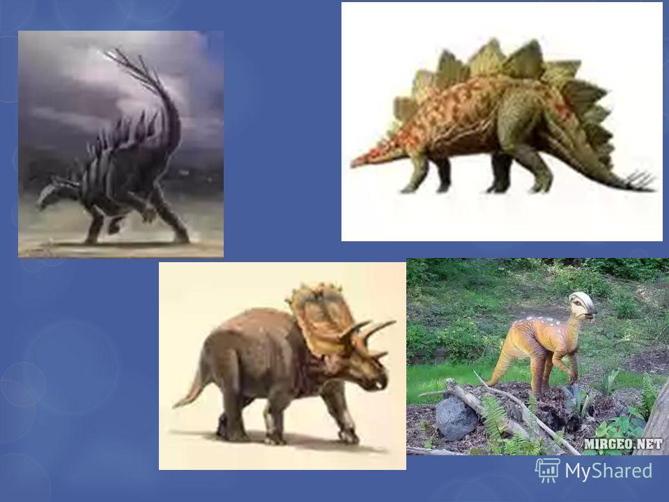 Травоядные динозавры Я защищё н! А я боль ше всех