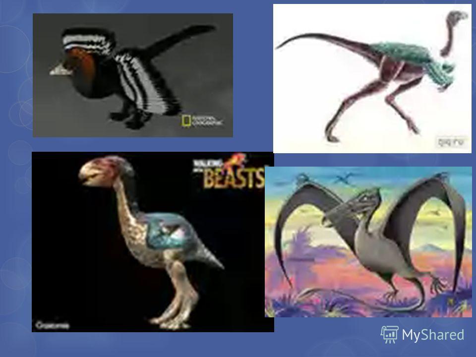 Динозавры птицы