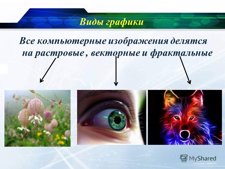 Виды графики Все компьютерные изображения делятся на растровые, векторные и фрактальные