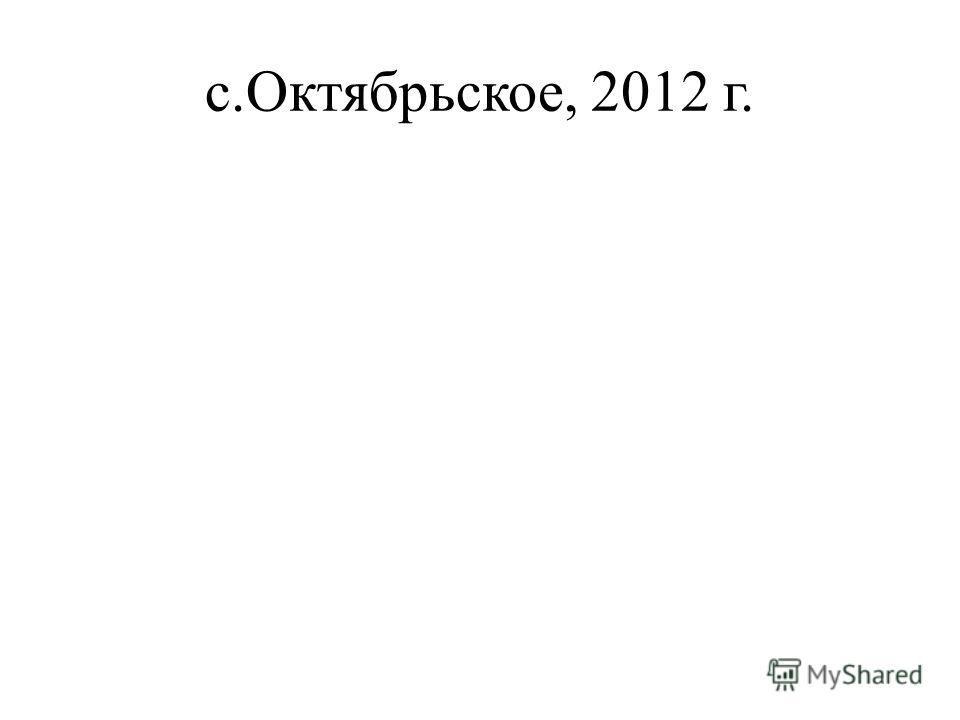 с.Октябрьское, 2012 г.