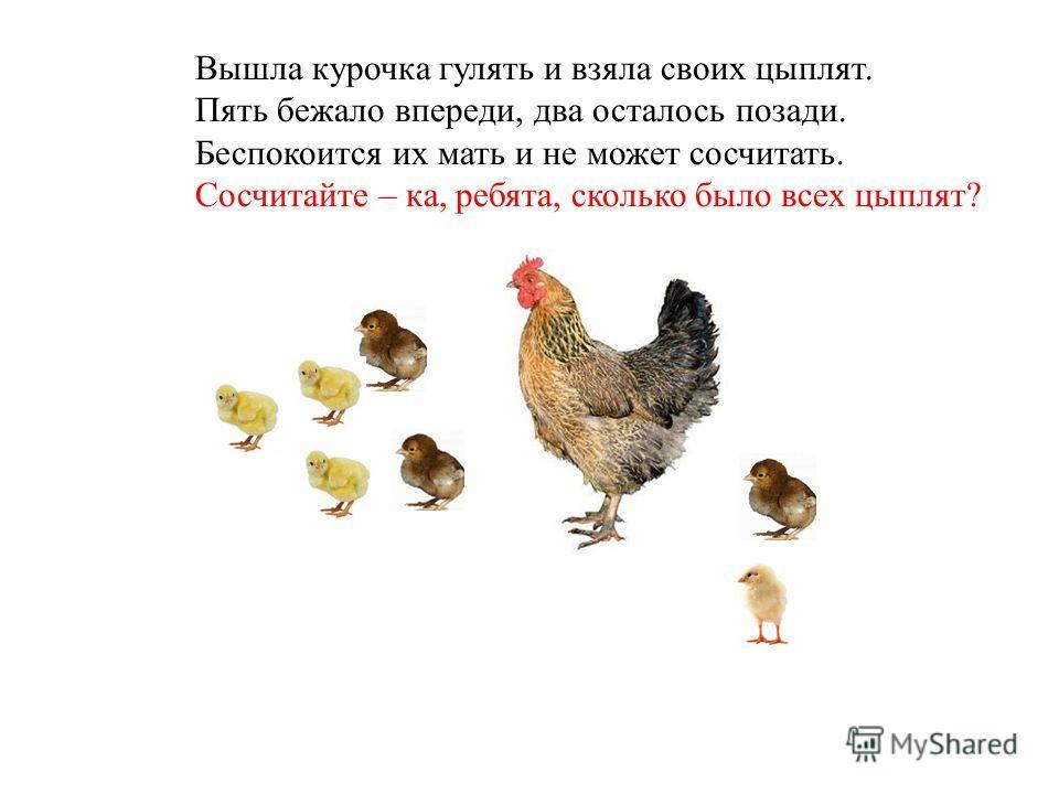 Вышла курочка гулять и взяла своих цыплят. Пять бежало впереди, два осталось позади. Беспокоится их мать и не может сосчитать. Сосчитайте – ка, ребята, сколько было всех цыплят?
