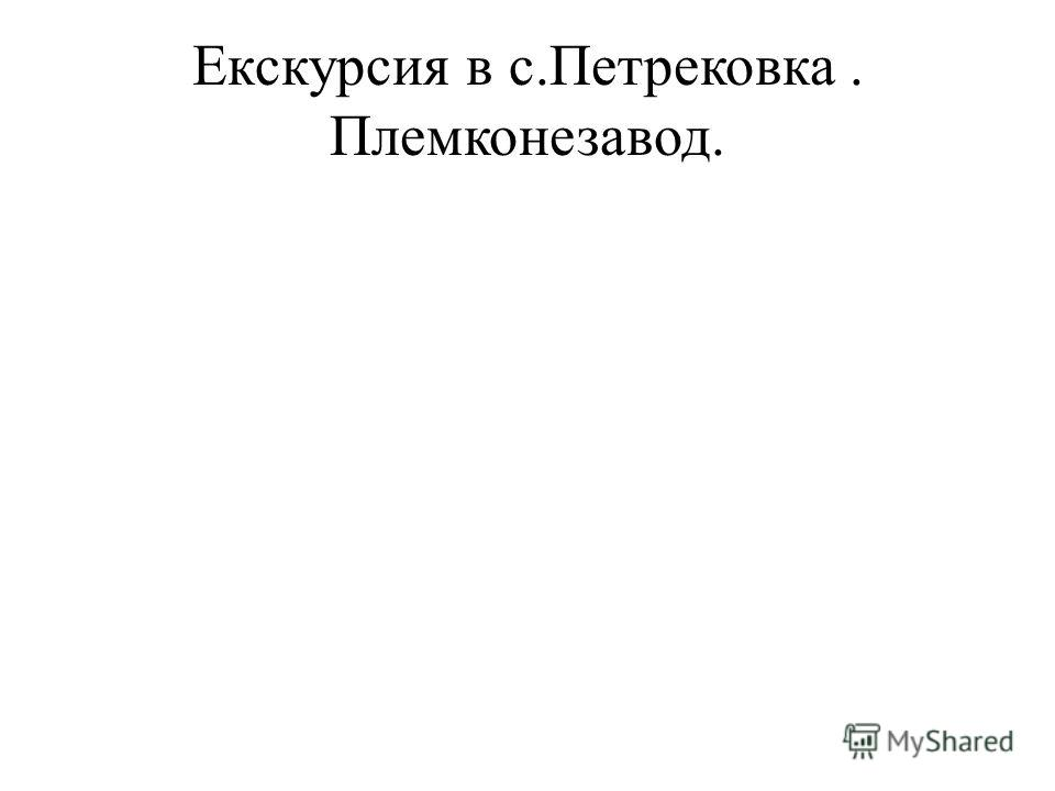 Екскурсия в с.Петрековка. Племконезавод.