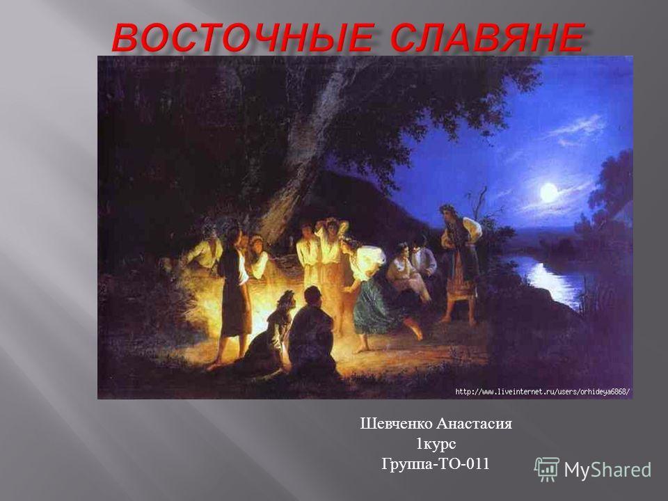 Шевченко Анастасия 1 курс Группа - ТО -011