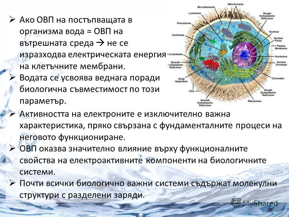 Ако ОВП на постъпващата в организма вода = ОВП на вътрешната среда не се изразходва електрическата енергия на клетъчните мембрани. Водата се усвоява веднага поради биологична съвместимост по този параметър. Активността на електроните е изключително в