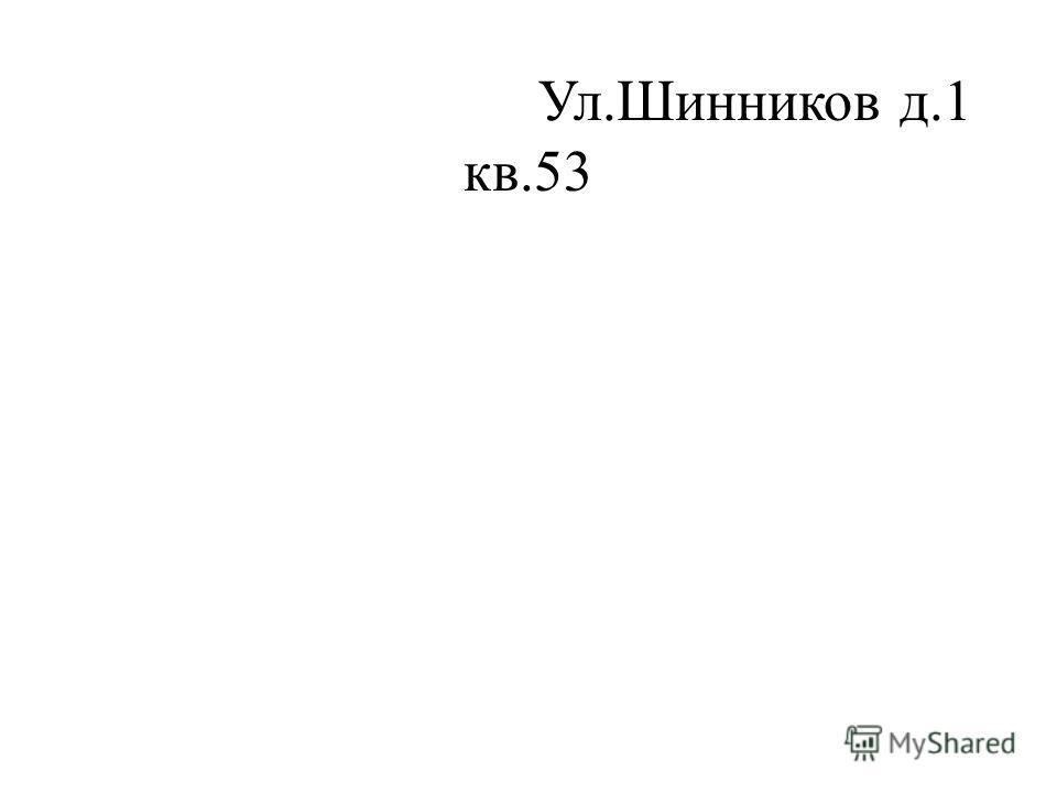 Ул.Шинников д.1 кв.53