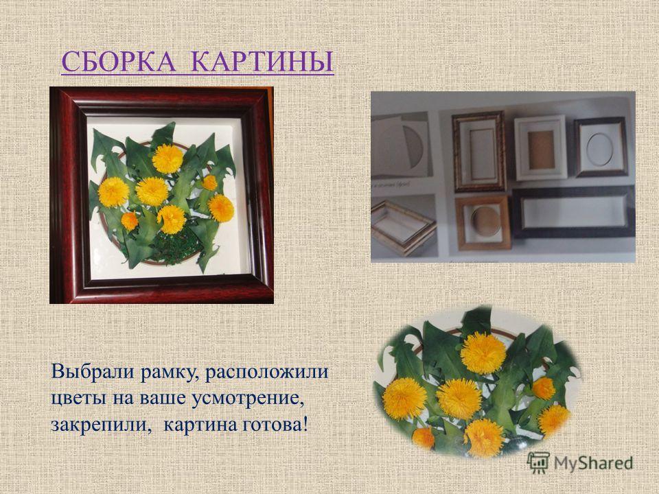 СБОРКА КАРТИНЫ Выбрали рамку, расположили цветы на ваше усмотрение, закрепили, картина готова!