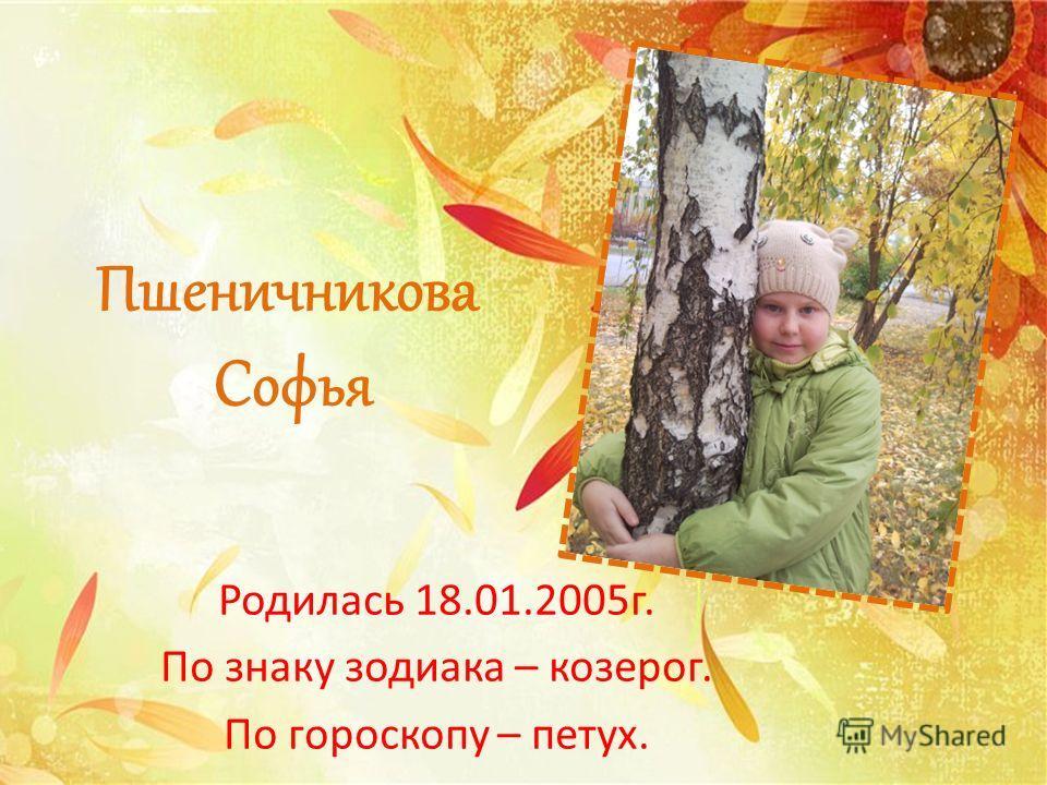 Пшеничникова Софья Родилась 18.01.2005г. По знаку зодиака – козерог. По гороскопу – петух.