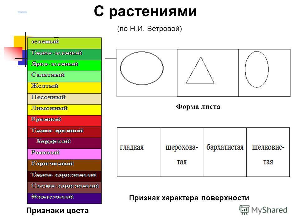 С растениями (по Н.И. Ветровой) Форма листа Признак характера поверхности Признаки цвета