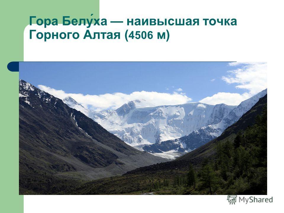 Гора Белу́ха наивысшая точка Горного Алтая ( 4506 м)