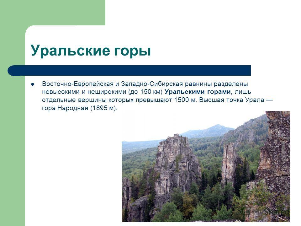 Уральские горы Восточно-Европейская и Западно-Сибирская равнины разделены невысокими и неширокими (до 150 км) Уральскими горами, лишь отдельные вершины которых превышают 1500 м. Высшая точка Урала гора Народная (1895 м).