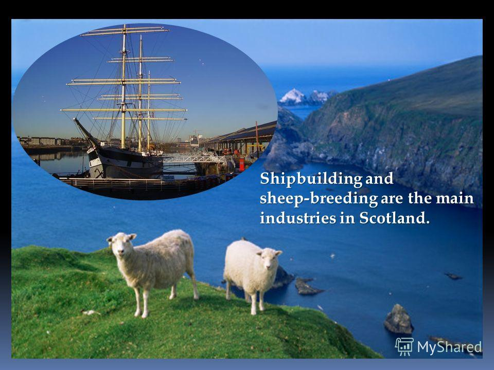Shipbuilding and sheep-breeding are the main industries in Scotland.