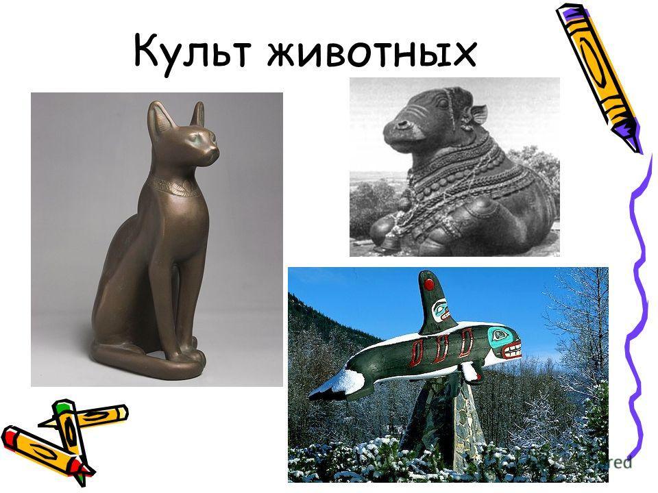 Культ животных