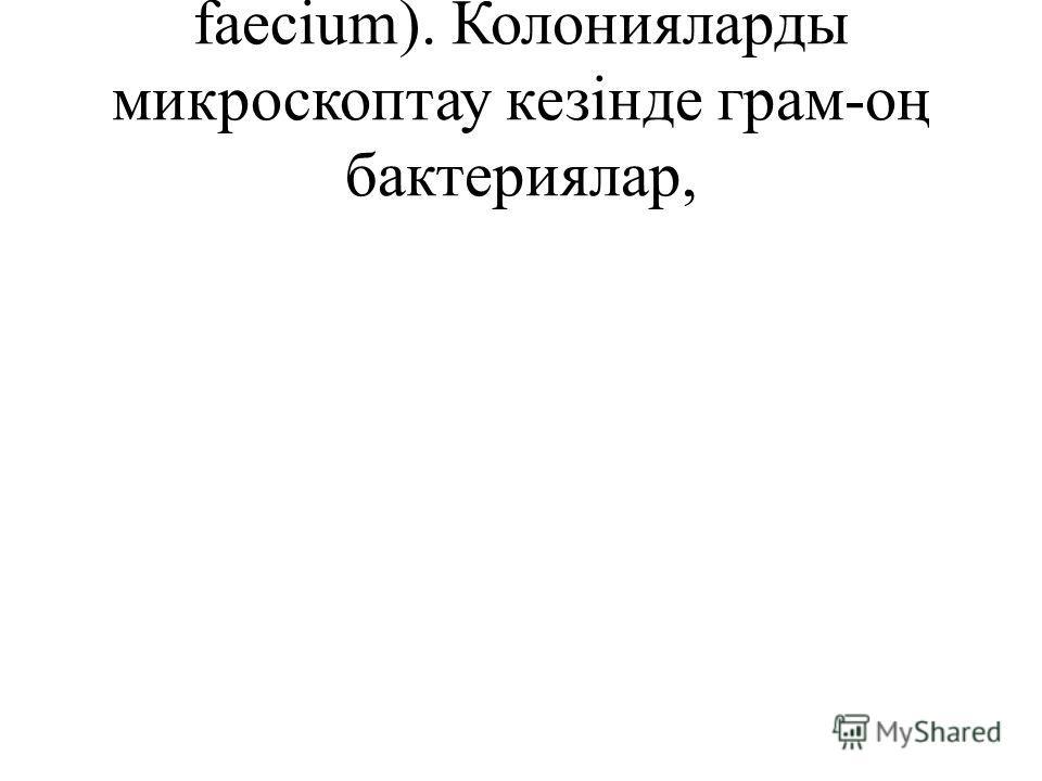 faecium). Колонияларды микроскоптау кезінде грам-оң бактериялар,