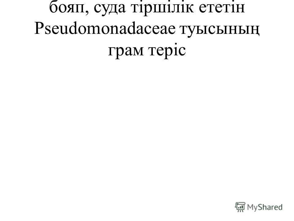 бояп, суда тіршілік ететін Pseudomonadaceae туысының грам теріс