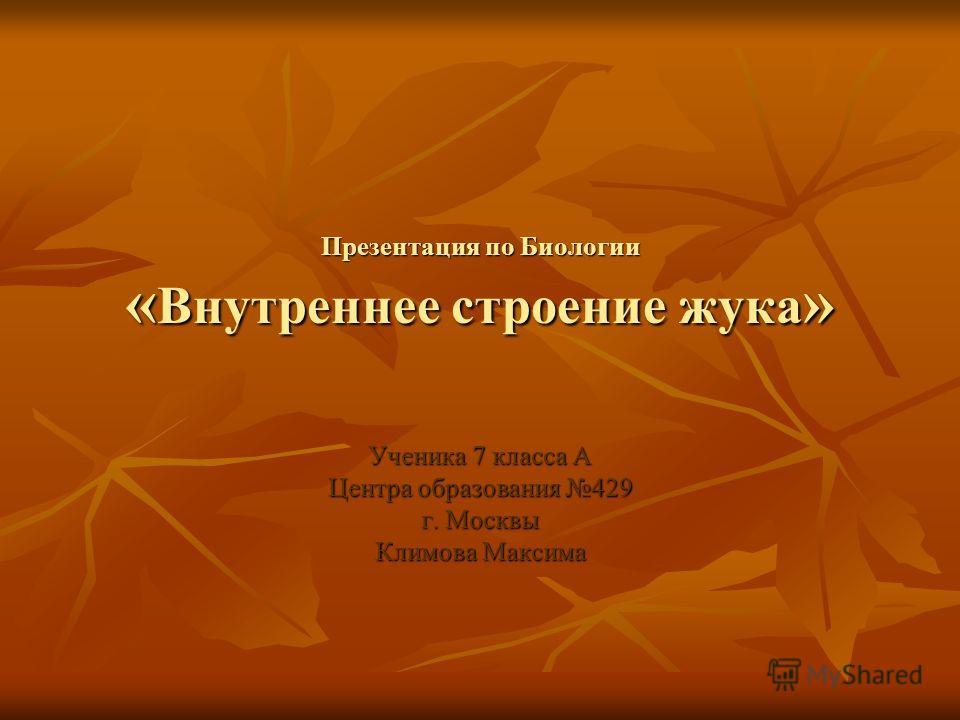 Презентация по Биологии « Внутреннее строение жука » Ученика 7 класса А Центра образования 429 г. Москвы Климова Максима