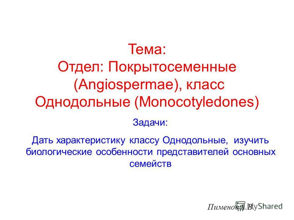 Пименов А.В. Задачи: Дать характеристику классу Однодольные, изучить биологические особенности представителей основных семейств Тема: Отдел: Покрытосеменные (Angiospermae), класс Однодольные (Monocotyledones)