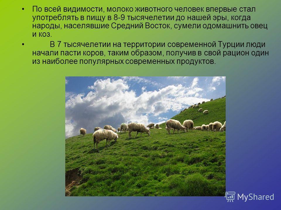 По всей видимости, молоко животного человек впервые стал употреблять в пищу в 8-9 тысячелетии до нашей эры, когда народы, населявшие Средний Восток, сумели одомашнить овец и коз. В 7 тысячелетии на территории современной Турции люди начали пасти коро