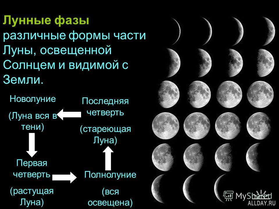 Новолуние (Луна вся в тени) Первая четверть (растущая Луна) Полнолуние (вся освещена) Последняя четверть (стареющая Луна) Лунные фазы – это различные формы части Луны, освещенной Солнцем и видимой с Земли.