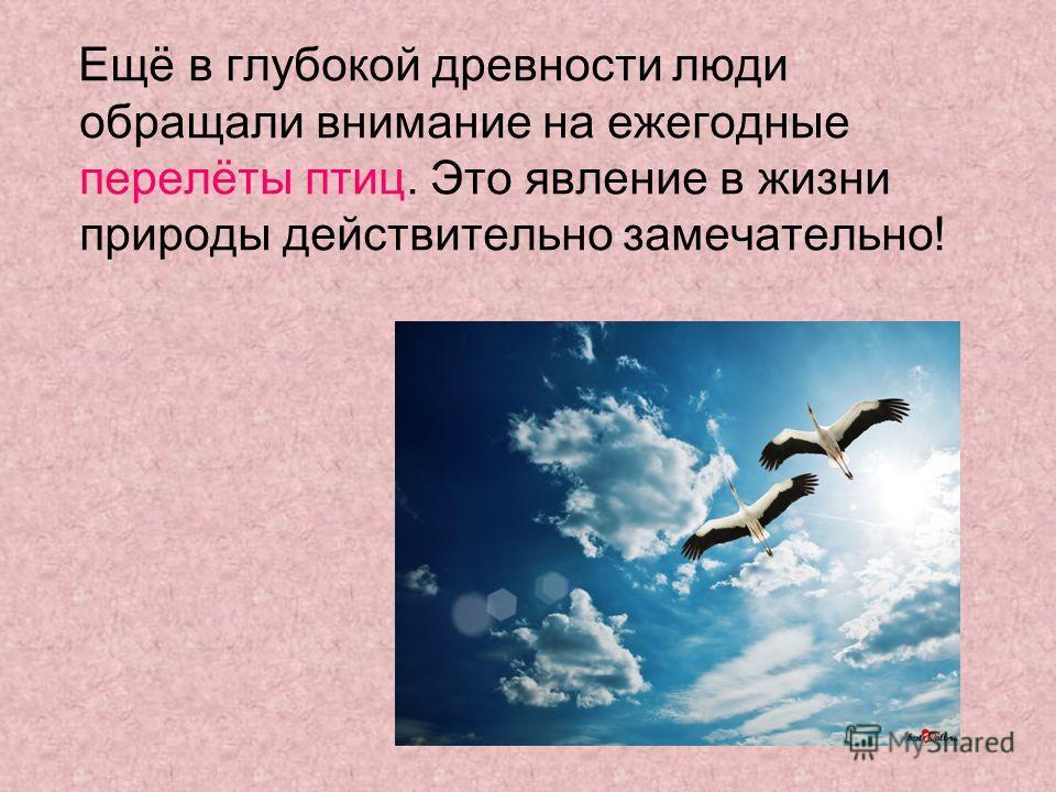 Ещё в глубокой древности люди обращали внимание на ежегодные перелёты птиц. Это явление в жизни природы действительно замечательно!