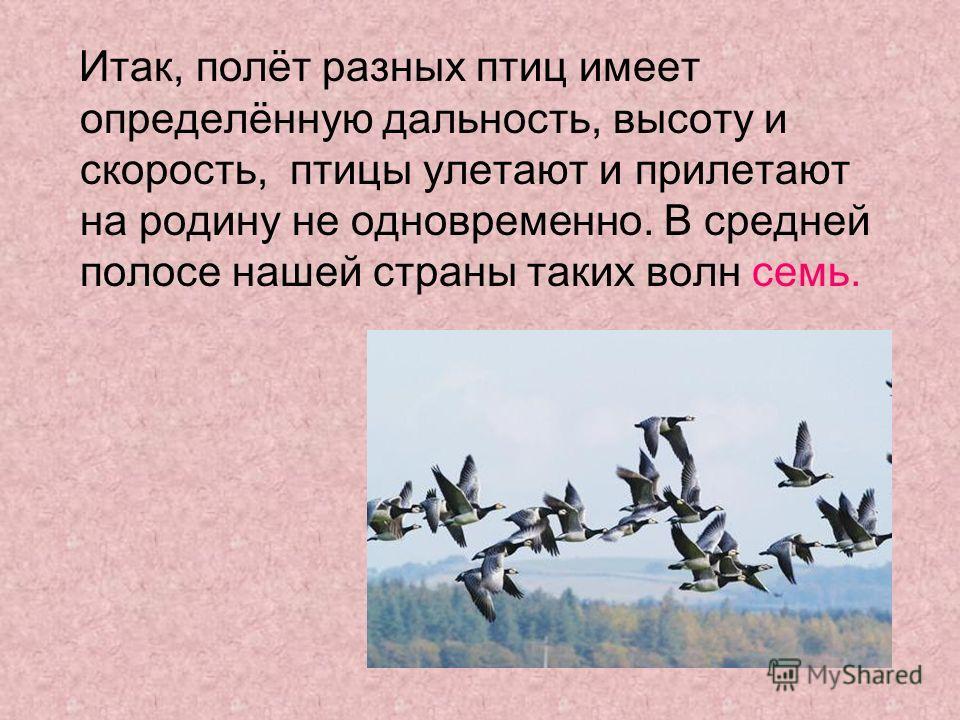 Итак, полёт разных птиц имеет определённую дальность, высоту и скорость, птицы улетают и прилетают на родину не одновременно. В средней полосе нашей страны таких волн семь.