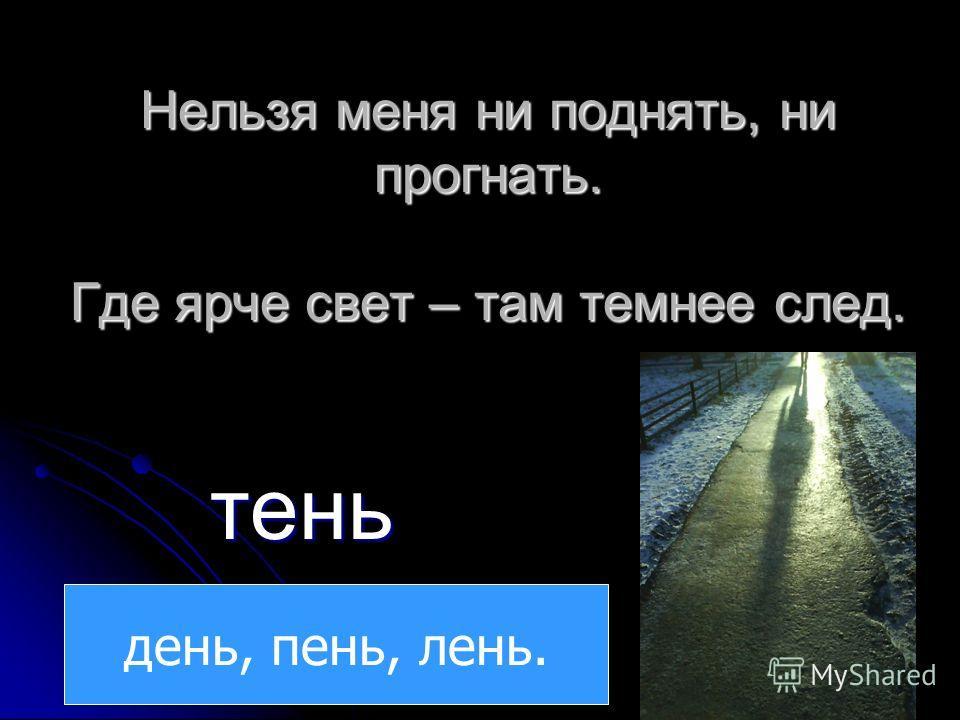 Нельзя меня ни поднять, ни прогнать. Где ярче свет – там темнее след. тень день, пень, лень.