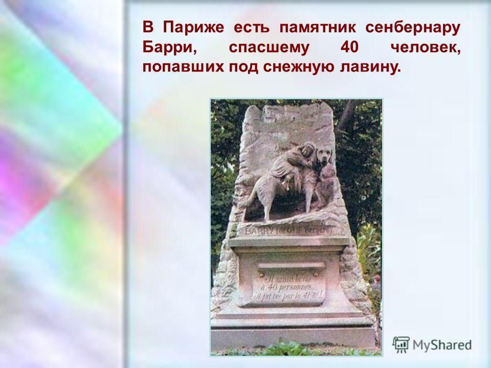 ЧУВАШСКАЯ РЕСПУБЛИКА, г. ШУМЕРЛЯ, МОУ «СОШ 2» В Париже есть памятник сенбернару Барри, спасшему 40 человек, попавших под снежную лавину.