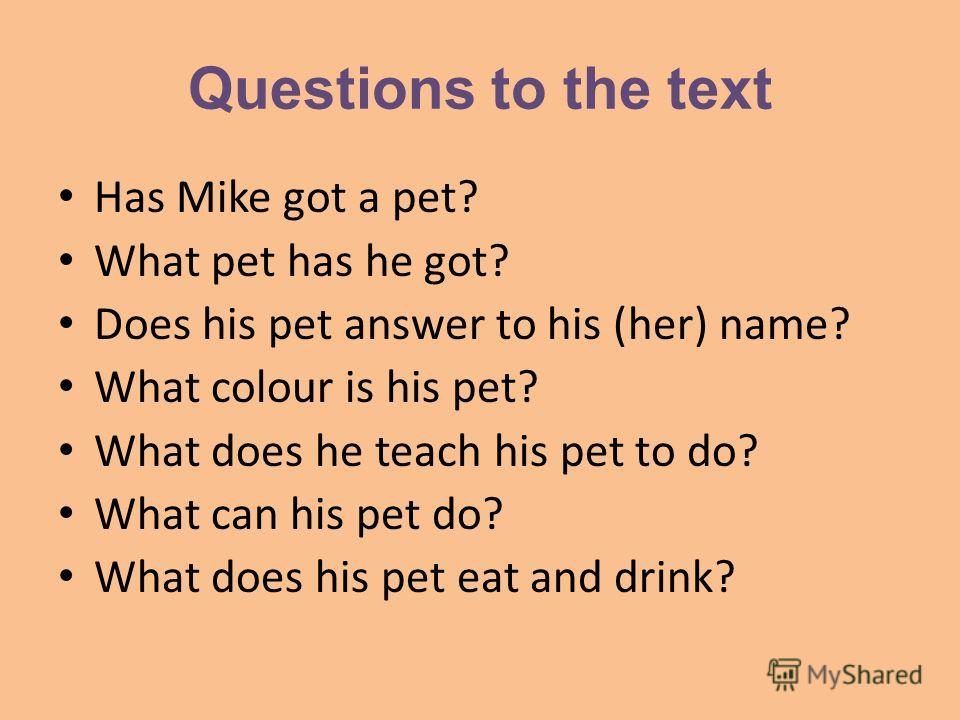 Questions to the text Has Mike got a pet? What pet has he got? Does his pet answer to his (her) name? What colour is his pet? What does he teach his pet to do? What can his pet do? What does his pet eat and drink?