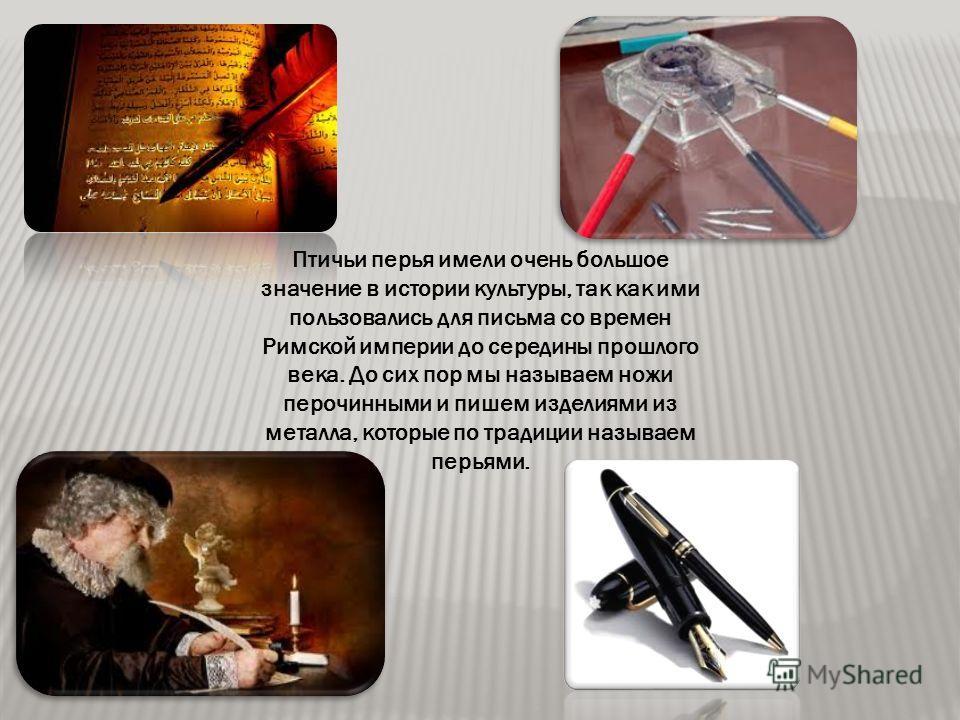 Птичьи перья имели очень большое значение в истории культуры, так как ими пользовались для письма со времен Римской империи до середины прошлого века. До сих пор мы называем ножи перочинными и пишем изделиями из металла, которые по традиции называем