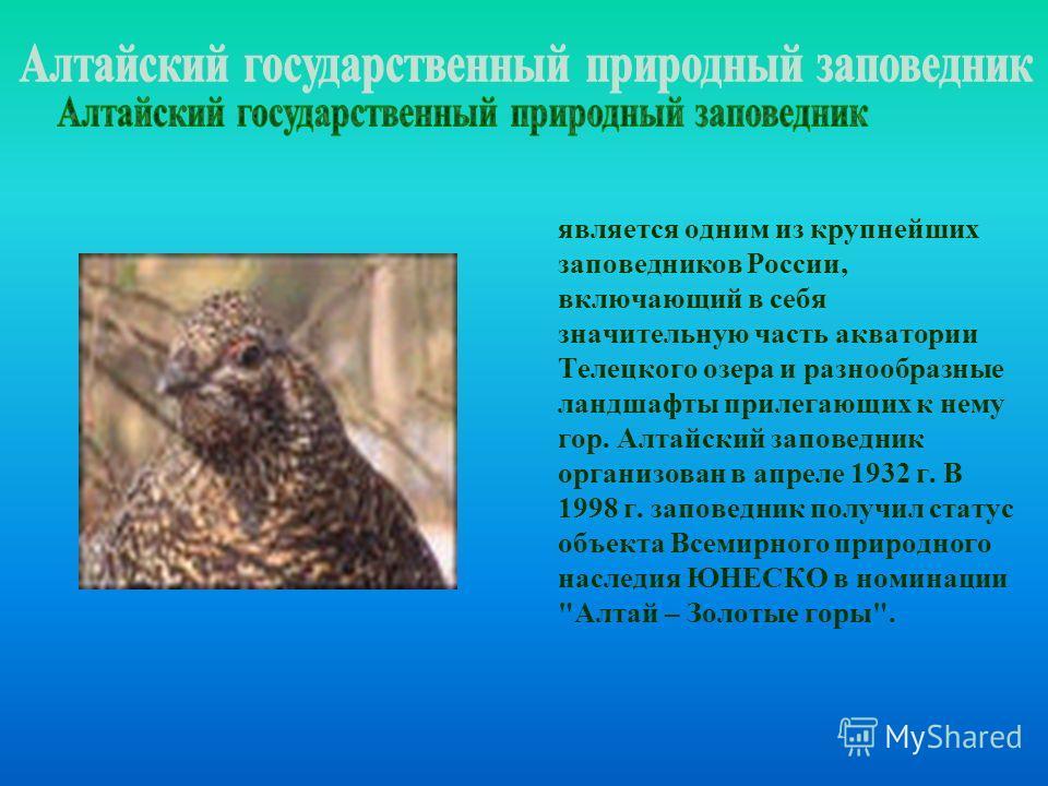 является одним из крупнейших заповедников России, включающий в себя значительную часть акватории Телецкого озера и разнообразные ландшафты прилегающих к нему гор. Алтайский заповедник организован в апреле 1932 г. В 1998 г. заповедник получил статус о