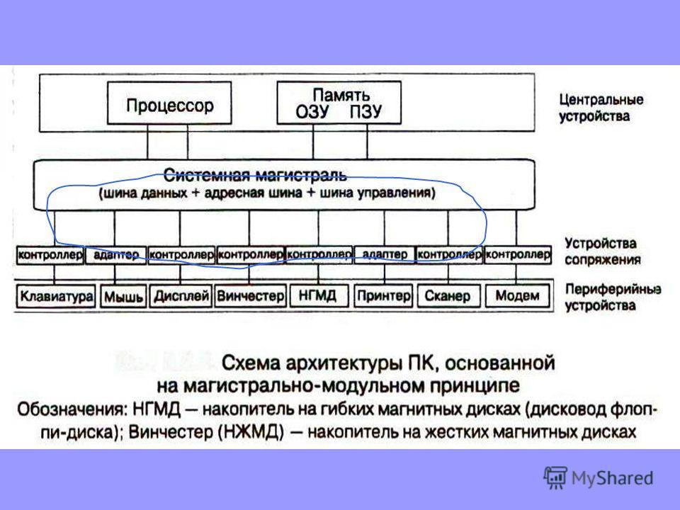 Отличительным признаком шины от других систем соединения является наличие трех групп линий, по каждой из которых передается свой вид информации: шины данных, шины адреса, шины управления.