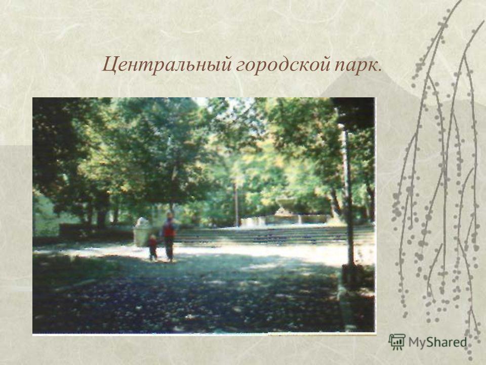 Центральный городской парк.