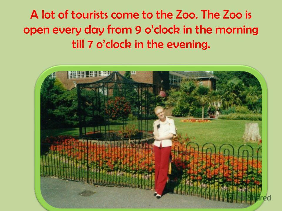 A lot of tourists come to the Zoo. The Zoo is open every day from 9 oclock in the morning till 7 oclock in the evening.
