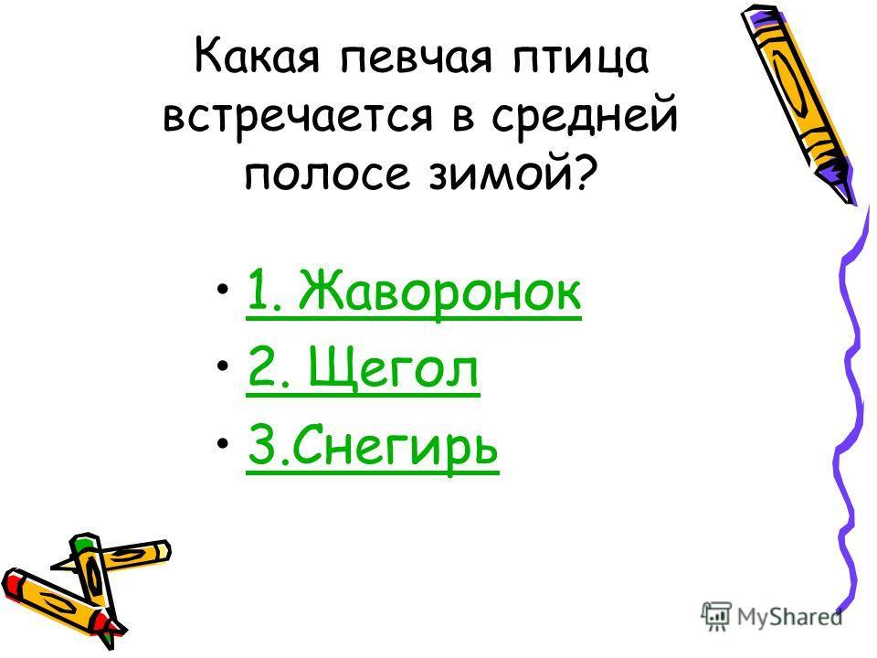 ПтицыАстрономияМузыка ЛитератураПодумайКомпьютеры ЖивописьИскусствоСказка