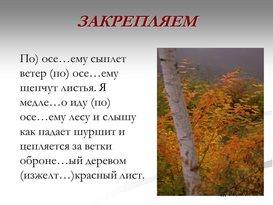 ЗАКРЕПЛЯЕМ По) осе…ему сыплет ветер (по) осе…ему шепчут листья. Я медле…о иду (по) осе…ему лесу и слышу как падает шуршит и цепляется за ветки оброне…ый деревом (изжелт…)красный лист.