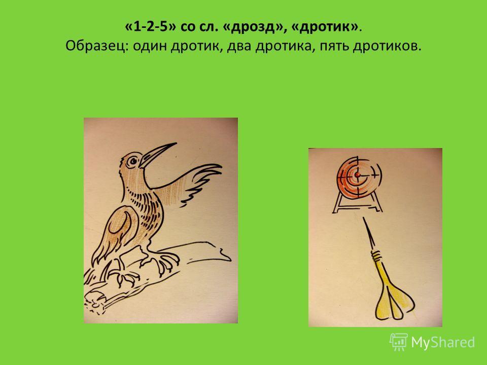 «1-2-5» со сл. «дрозд», «дротик». Образец: один дротик, два дротика, пять дротиков.