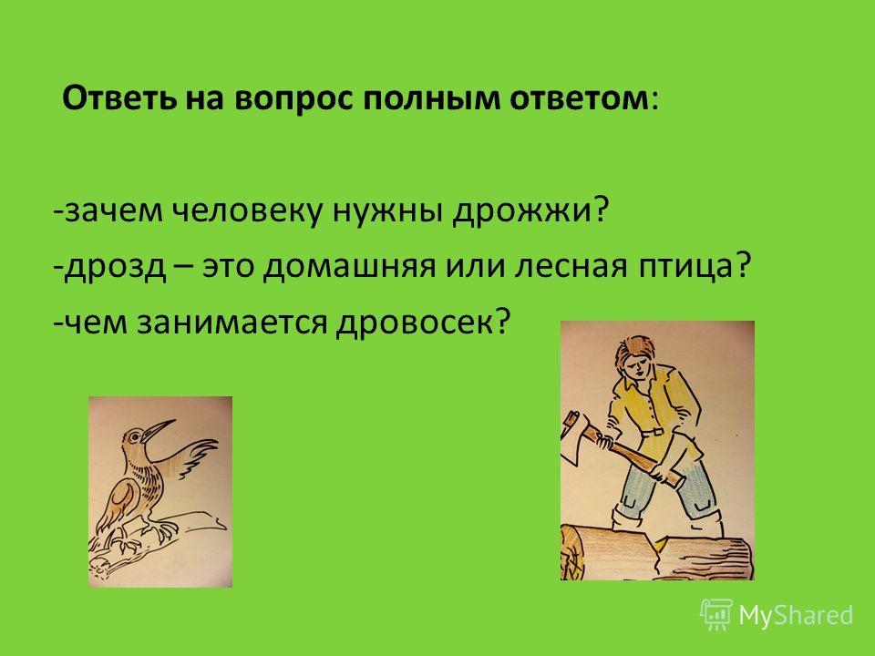 Ответь на вопрос полным ответом: -зачем человеку нужны дрожжи? -дрозд – это домашняя или лесная птица? -чем занимается дровосек?