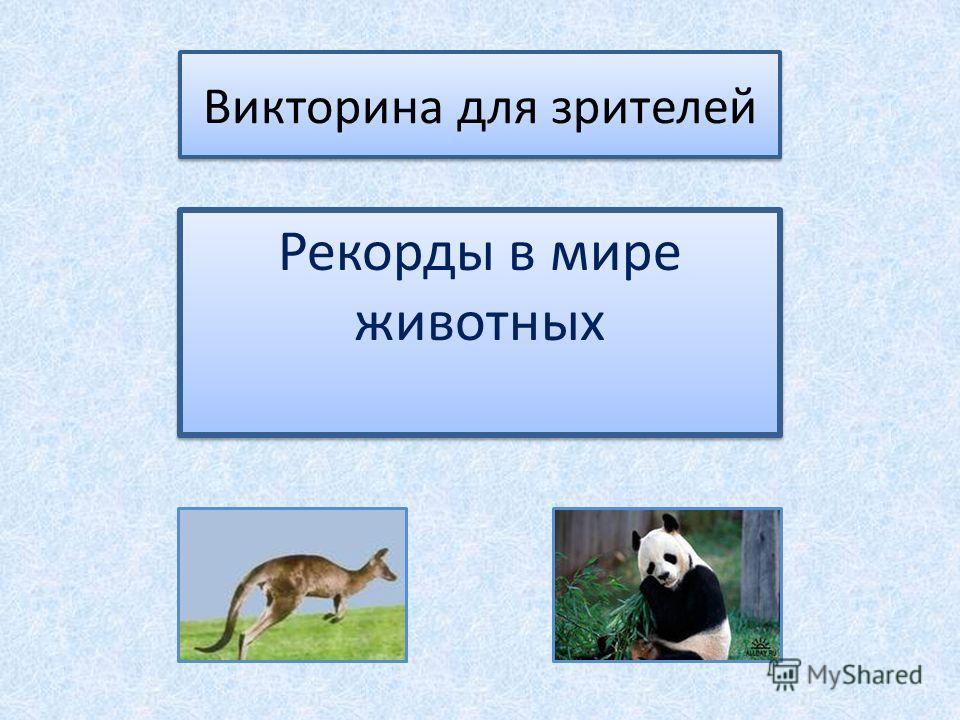 Викторина для зрителей Рекорды в мире животных