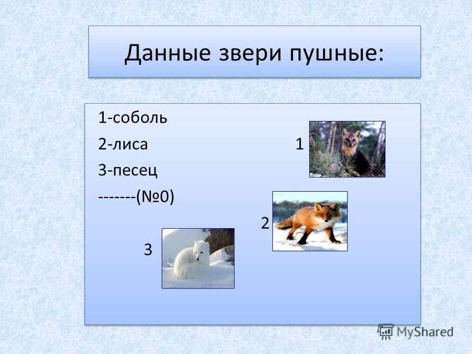 Данные звери пушные: 1-соболь 2-лиса 1 3-песец -------(0) 2 3 1-соболь 2-лиса 1 3-песец -------(0) 2 3