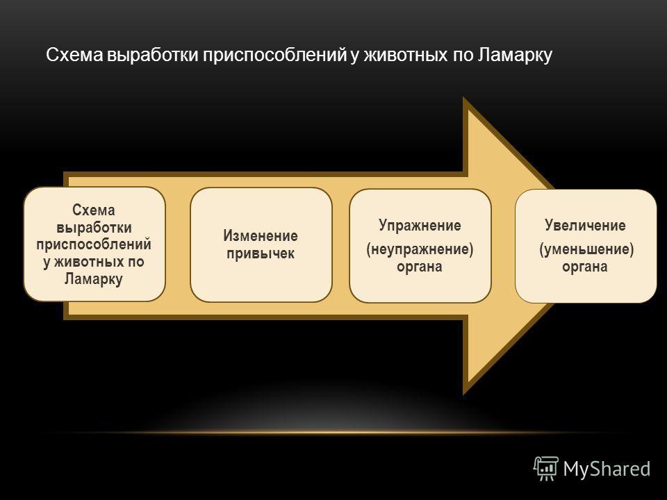Схема выработки приспособлений у животных по Ламарку Изменение привычек Упражнение (неупражнение) органа Увеличение (уменьшение) органа