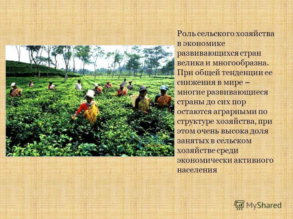 Роль сельского хозяйства в экономике развивающихся стран велика и многообразна. При общей тенденции ее снижения в мире – многие развивающиеся страны до сих пор остаются аграрными по структуре хозяйства, при этом очень высока доля занятых в сельском х
